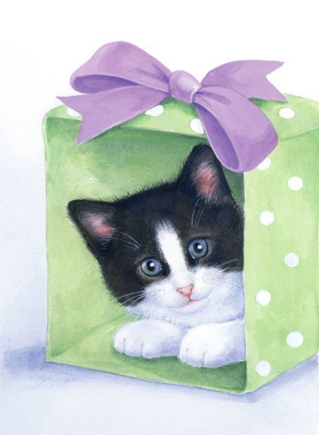 Lisa Alderson - LA - kitten and box.psd