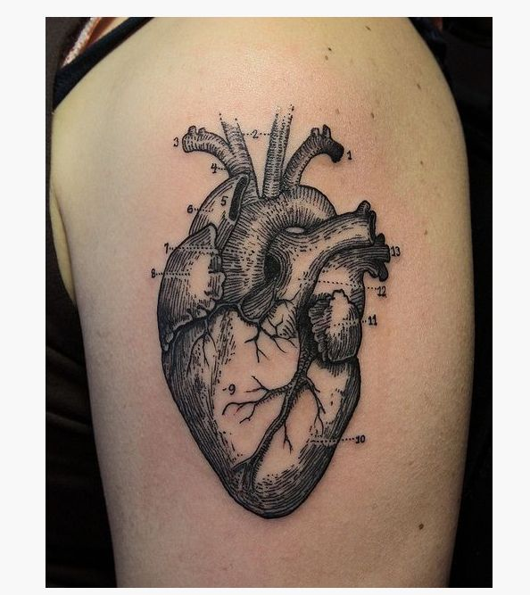 22 Most Realistic Heart tattoo That I Have Ever Seen