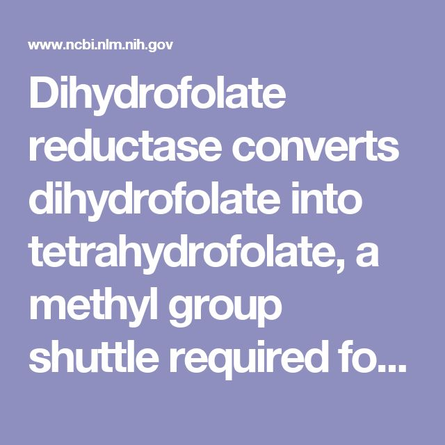 Dihydrofolate reductase converts dihydrofolate into tetrahydrofolate, a methyl group shuttle required for the de novo synthesis of purines, thymidylic acid, and certain amino acids.