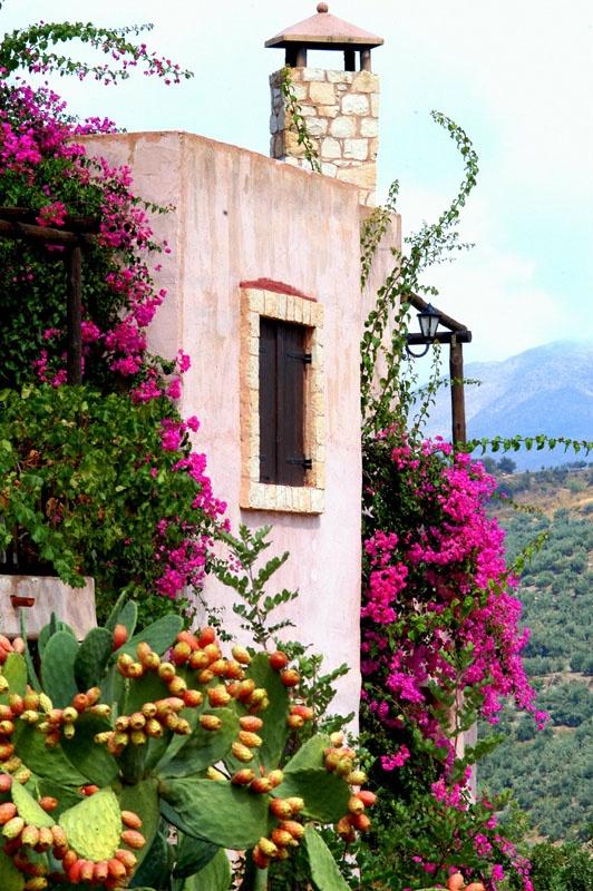 #Axos village in Rethymno, Greece