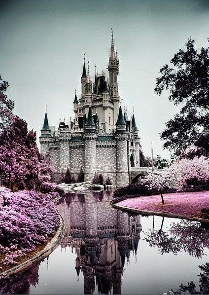 princess castle, I need to check this place out!!!