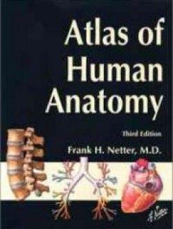 54 best anatomy books online images on pinterest books online atlas of human anatomy third edition free ebook online fandeluxe Gallery