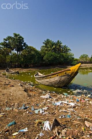 Polluted Backwaters at Tamil Nadu