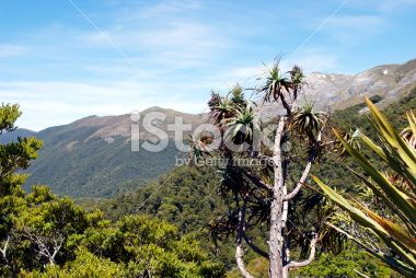 Mountain Neinei with Distant Mt Arthur, The Kahurangi National Park Royalty Free Stock Photo