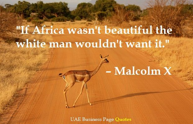 Malcolm X Quote about Africa