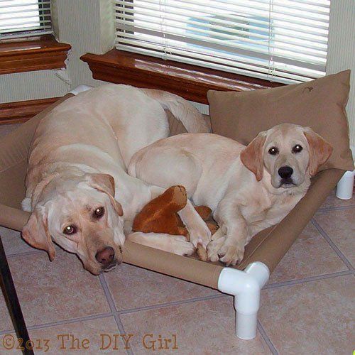 PVC Dog Cot Tutorial - TheDIYGirl.com  Now to scale it down to fit the cats! Cat tower construction in my future...