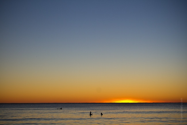 Love this photo, first light today at Manly Beach... and 2 mates have a little conversation while swimming (16 Jul 2012)