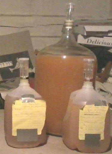 How to Make Hard Apple Cider