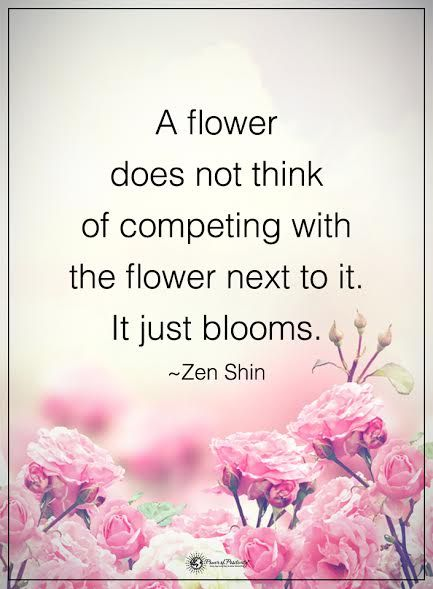 Wedding Flowers Quotes : Best ideas about zen buddhism quotes on