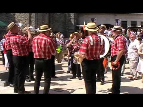 """DIY Nivelles - Foire agricole du lundi de Pentecôte 2010 -  Le """"Ray Music Band"""""""