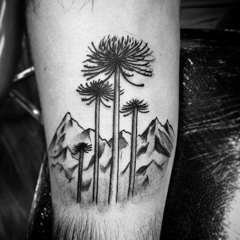 Resultado de imagen para tatuajes de araucaria