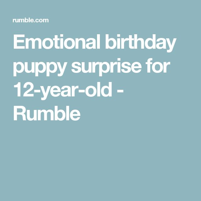 Emotional birthday puppy surprise for 12-year-old - Rumble