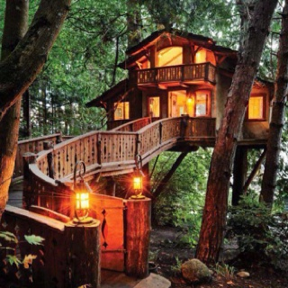 This is the coolest treehouse ever. I could live in this.