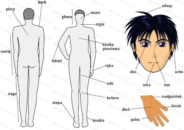 polish body parts