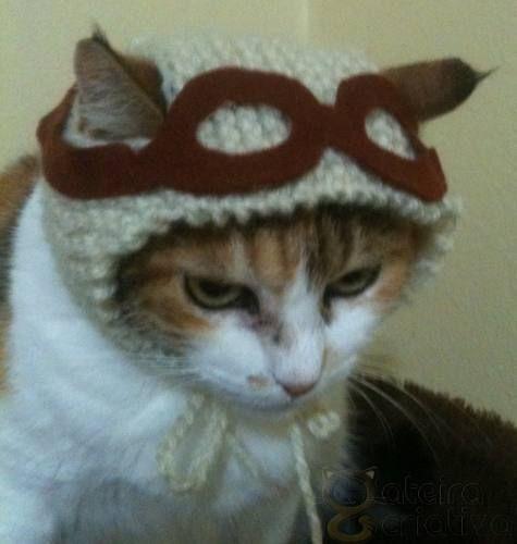 croche gatos - Pesquisa do Google