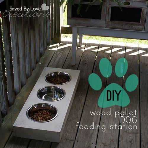 25 Best Ideas About Dog Feeding Station On Pinterest