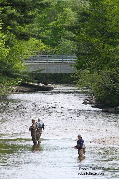17 best images about great fly fishing rivers on pinterest for Fly fishing maine