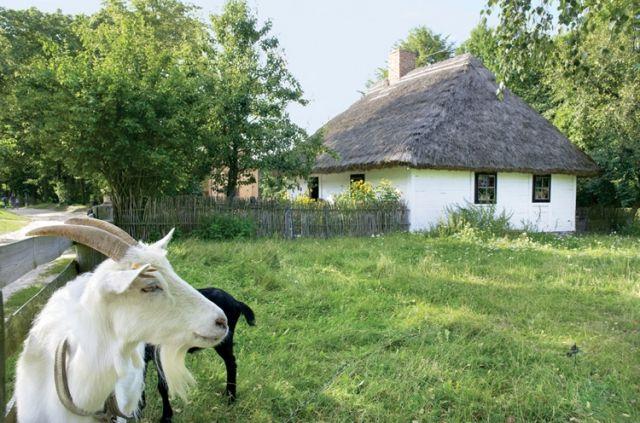 Skansen na Mazowszu w Sierpcu.