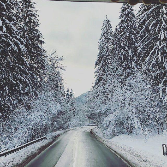 Снежная Румыния  by visitor @igor.saraev #boostingromania #promovezromania #ig_romania #transylvania #romaniamagica #instagood #szeklerneumarkt #visitkezdi #townofcourtyards  #szeklerland #ig_europe #vacation #explore #travel #discover #nature #passionpassport #bbctravel #visualsoflife#natureshot #winter #snow #frost #inspiration #inspo #beautiful #landscape #wonderful #naturelover