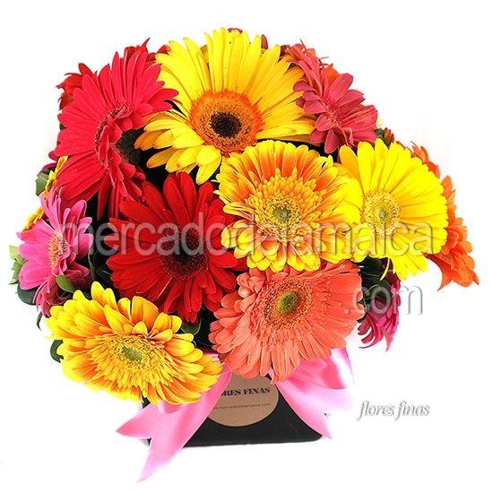 Floreria Mexico Gerberas Nido Color Extra !| Envia Flores