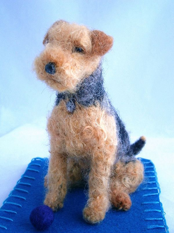 welsh terrier | by adore62