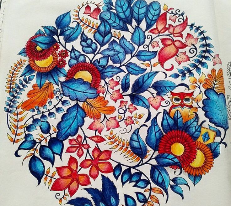 Mandala Owls Enchanted Forest. Mandala de Corujas Floresta Encantada. Johanna Basford