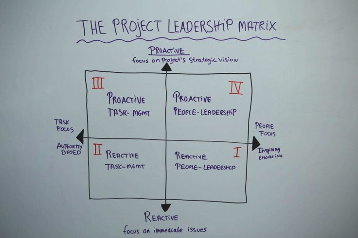 what kind of project leaders are you?