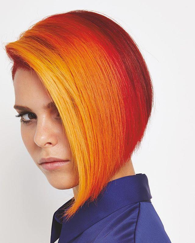 Wonderful Rainbow Hair Colors Hidden In Brown