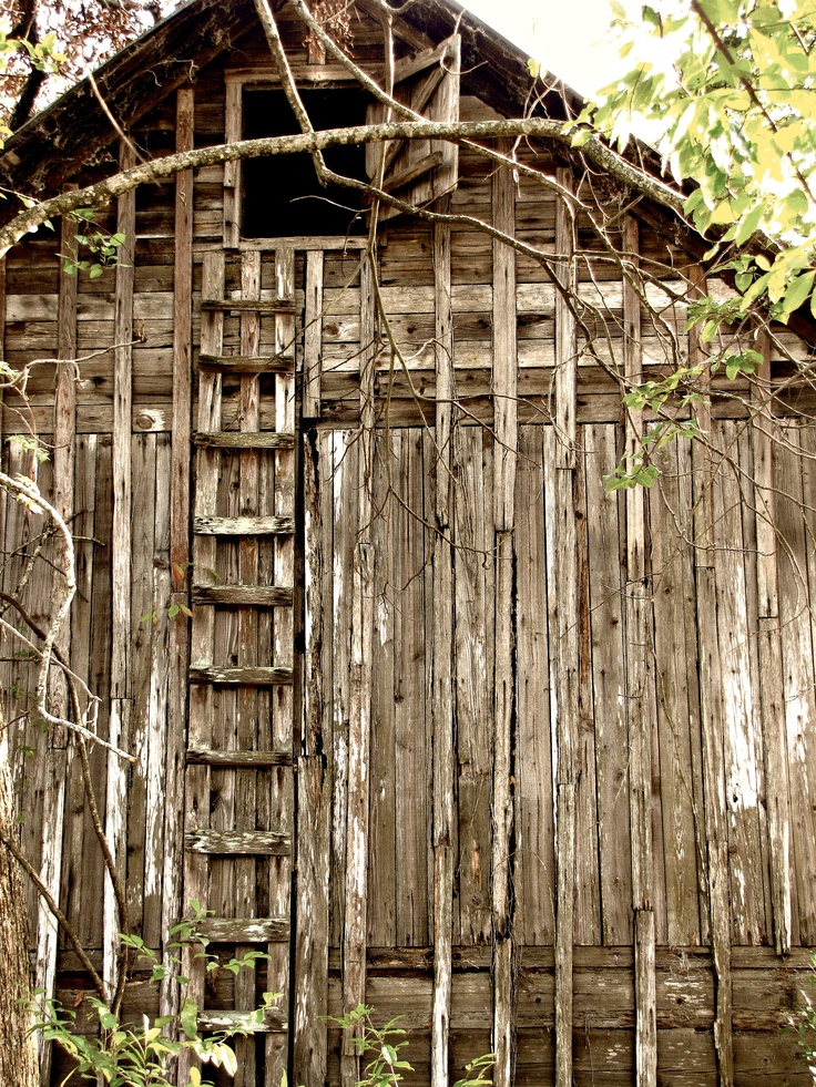 old tobacco barn... love the ladder