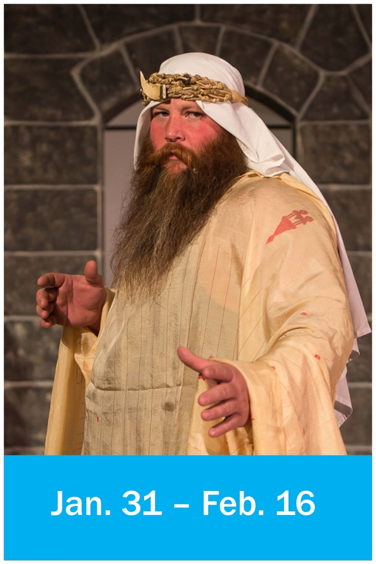 'The Sultan of Bashir' (Doug Vanderpool) appearing in Don't Drink the Water at Raven Theater.