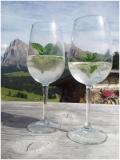 De hype Hugo – Een Zuid-Tiroolse cocktail  Hugo Spritz is een zomerse cocktail die vnl in Noord-Italië gedronken wordt. Het hoofdingrediënt is vlierbloesemsiroop (Holunderblütensirup) en dat wordt aangelengd met prosecco, sekt of spumante (een bruisende wijn). Bij de cocktail hoort ook een strookje citroenschil of een schijfje appel en wat verse munt en ijsblokjes. Optioneel kun je bruiswater toevoegen als je het drankje wat verfrissender en lichter lekkerder vindt. De perfecte Hugo is…
