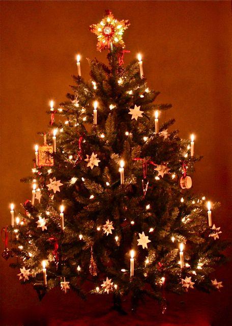 moravian star christmas tree | Days of Yore | Pinterest
