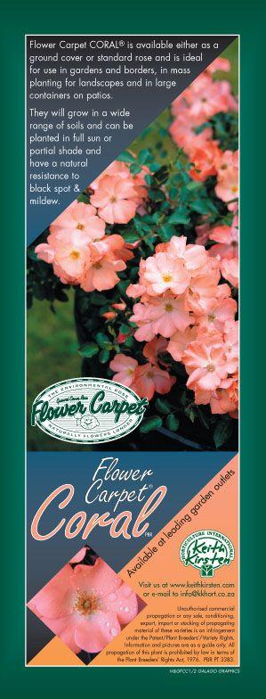 house&garden ad