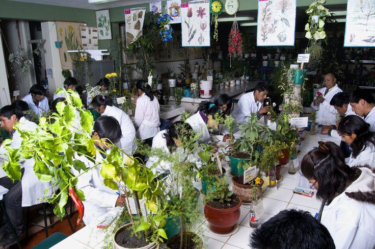 Escuela Profesional de Ingeniería Agronómica de la Universidad Nacional del Altiplano.  Foto: Octubre 2014.
