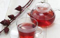 Chá de hibisco e seus benefícios