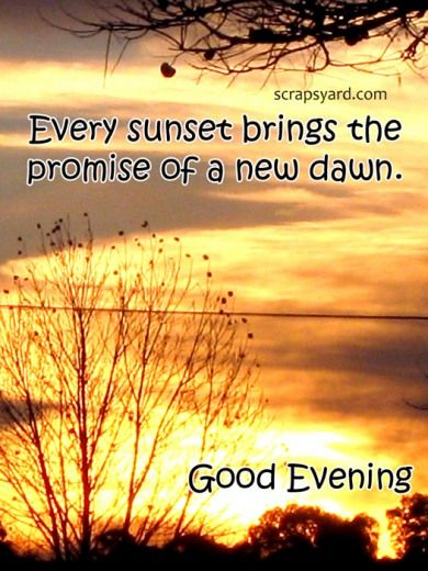 good evening quotes - Google Search