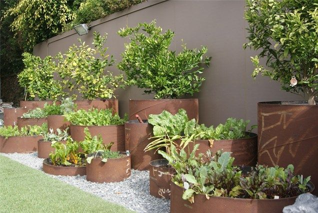 These raised beds are far from ordinary. They are made from industrial steel pipe procured from a California steel yard. The pipes, which are of different heights and widths, are watered with drip irrigation emitters.