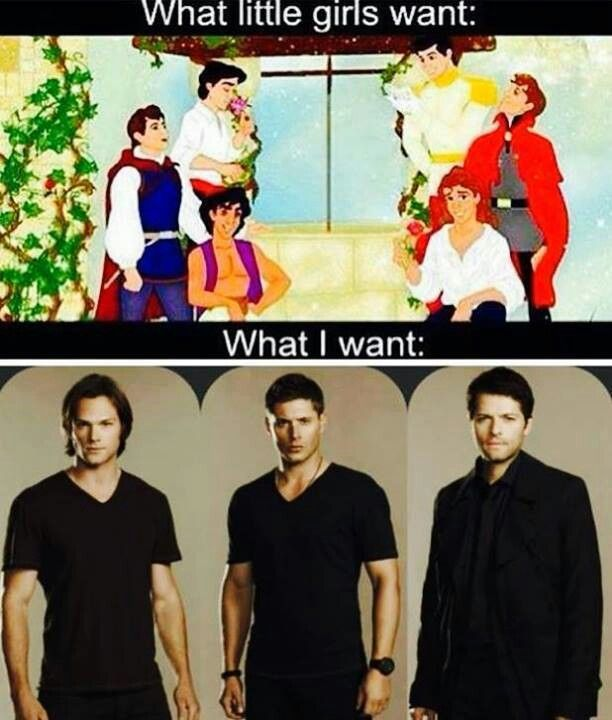 SupernaturaL ~  Sam , Dean and CastieL for me ..
