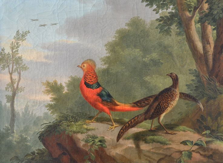A Golden Pheasant and Hen in a Landscape; a Silver Pheasant and Hen; a pair by JACOBUS VONCK - John Bennett Fine Paintings