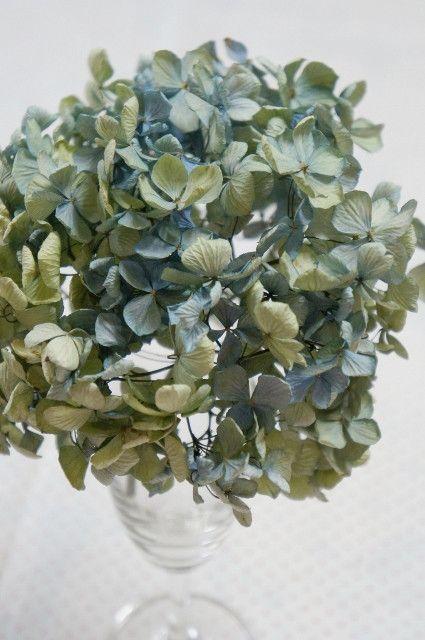 紫陽花のドライフラワーの作り方♪|ママの薔薇のブログ