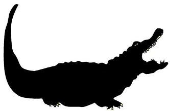 crocodile, animal, ombres chinoises, theatre d`ombres puppet shadow, silhouette, marionnette, free