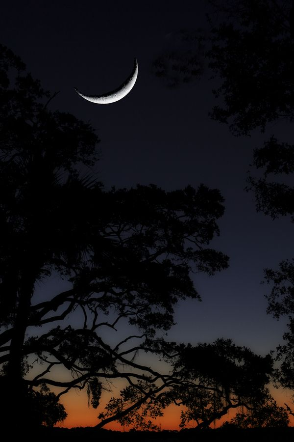 17 best images about by the light of the moon on pinterest | night, Hause ideen