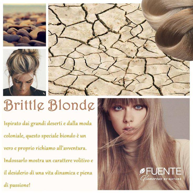 Immenso come il deserto, affascinante come il richiamo dell'avventura… Il Brittle Blonde è un biondo coloniale che ben si addice all'infuocata Estate 2017. E ovviamente per realizzarlo la scelta migliore è solo una: il Colore Organico Tierra by Fuente!