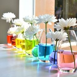 Tips and ideas for styling a rainbow-themed wedding (Pic via Paperie & Cakery)