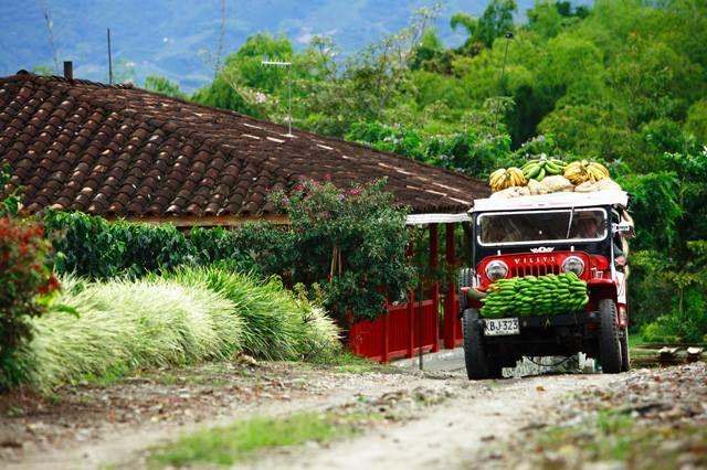 paisaje cultural cafetero . Marca Colombia.