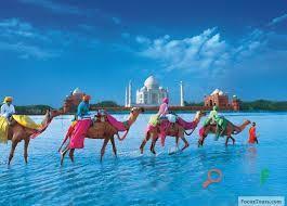 Travel Agency in Bhubaneswar