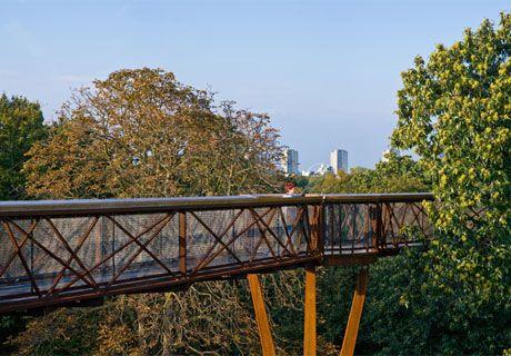 Treetop Walkway - Kew Gardens in London