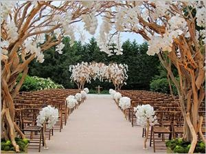 I like the arch if I were to have an outdoors ceremony.