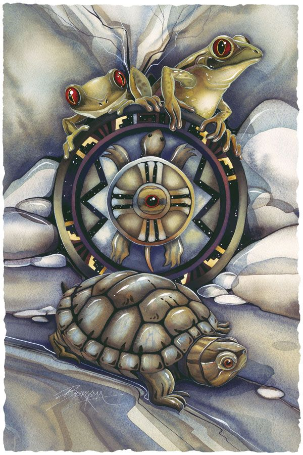 Bergsma Gallery Press :: Paintings :: Insects & Amphibians :: Misc. Amphibians :: Turtle Island - Prints