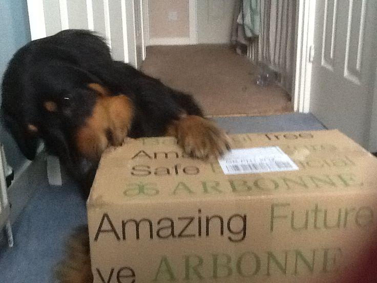 My Arbonne order has arrived!!!